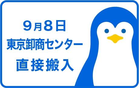 9月8日東京卸商センター